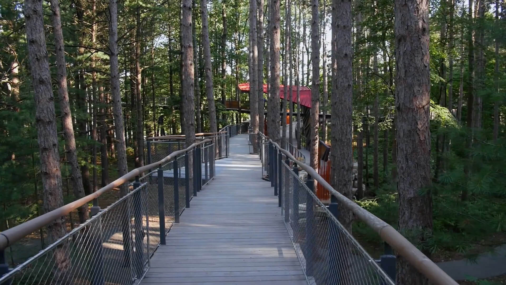 Canopy Walk at Dow Gardens